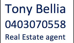 Tony Bellia Real Estate